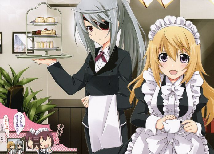 Infinite Stratos Laura Bodewig Charlotte Dunois wallpaper