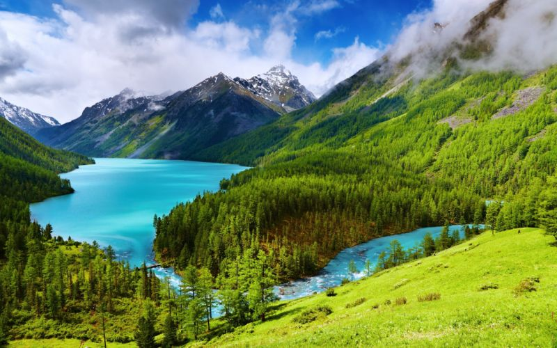 Landscape Hill Tree Mountain Forest Nature Lake wallpaper
