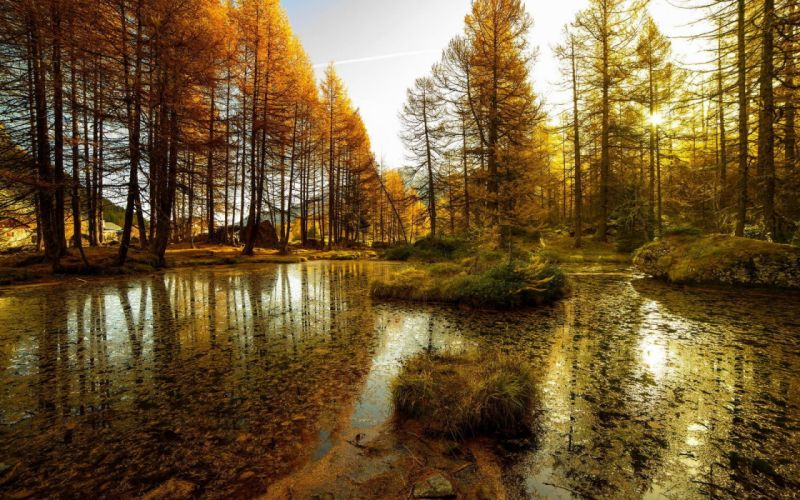 Lake forest landscape nature autumn reflection wallpaper