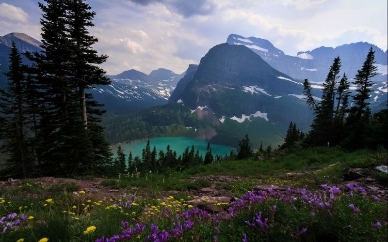 Flower Grinnell Glacier Landscape Lewis Range Montana Mount Gould Glacier National Park Grinnell Lake Lake snow wallpaper