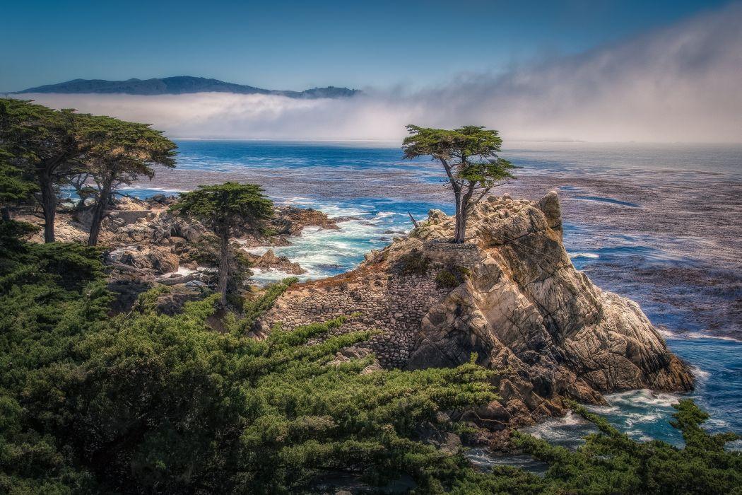 Fog Rock Coast Monterey Bay Monterey Cypress sea ocean wallpaper