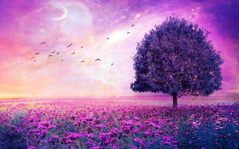 Purple Flower Nature Tree Field Lonely Tree Flower sky stars fantasy artwork wallpaper