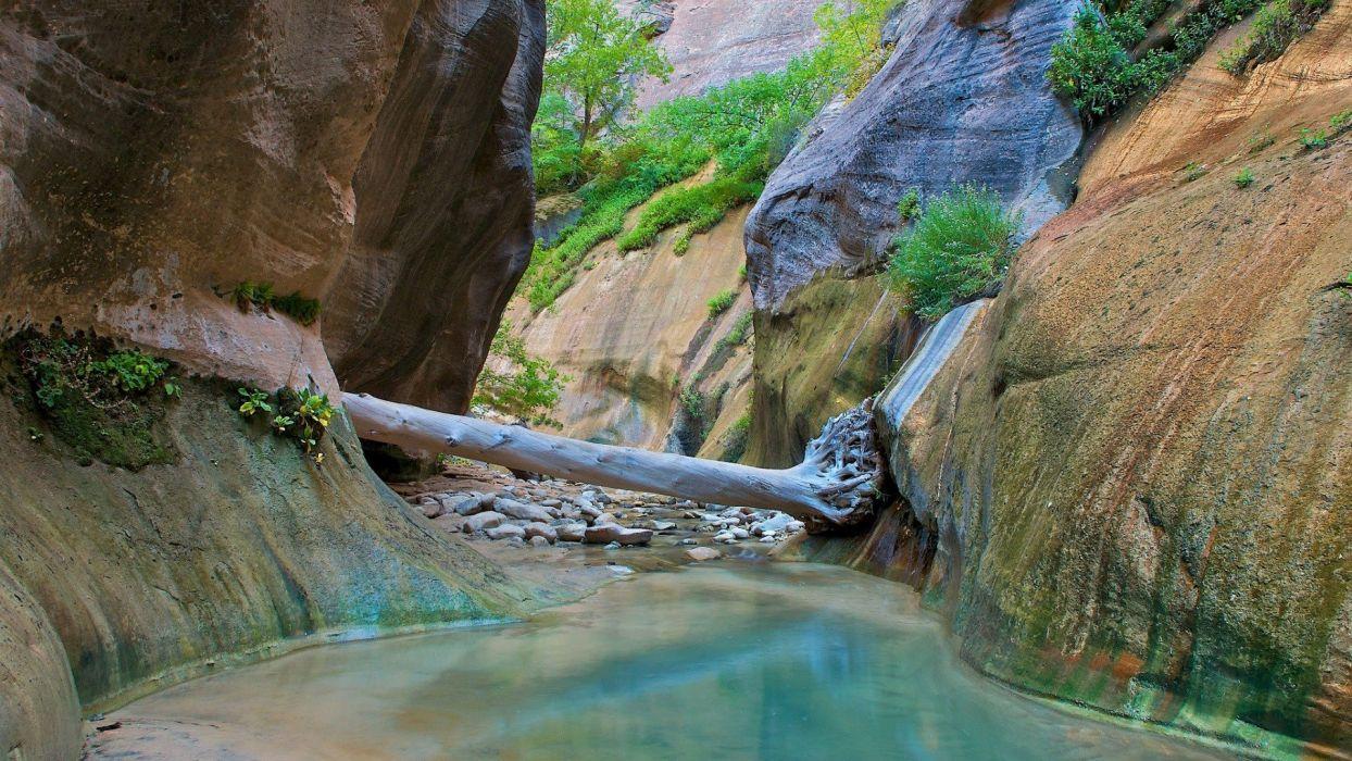 Zion National Park Wallpaper 1920x1080 725545 Wallpaperup