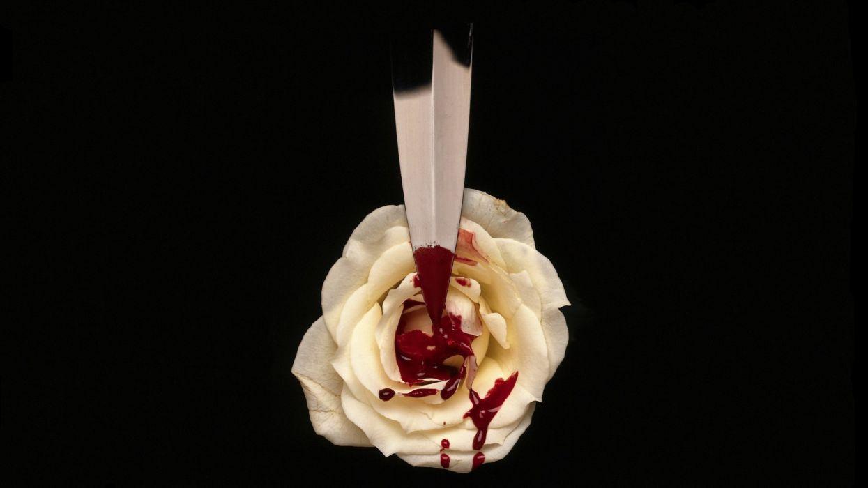 Dark White Black Blood Rose Knife Blade Drops Wallpaper 2560x1440