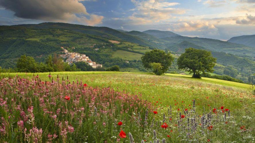 landscape beauty Spring Flowers Growing wallpaper
