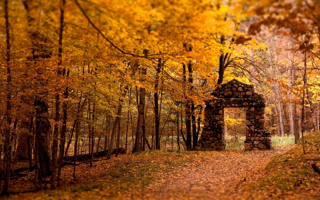 Wall Aperture Wood Stones Autumn Leaves Trees wallpaper