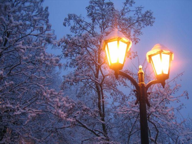 Lantern Winter Snow Light Trees wallpaper