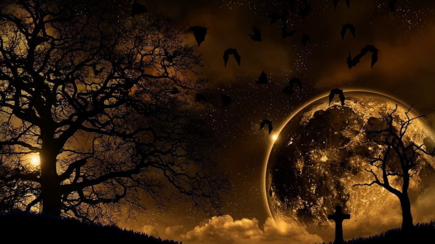 Trees Nature Night Planet Birds Landscape wallpaper