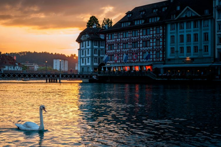 Lucerne Switzerland Swan Building Evening wallpaper