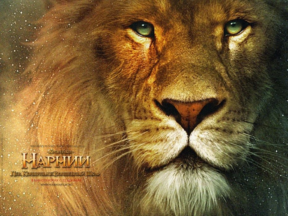 NARNIA adventure fantasy family series book 1narnia chronicles disney poster lion wallpaper
