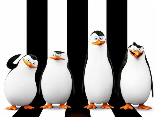 Penguins of madagascar Skipper Kowalski Penguins wallpaper