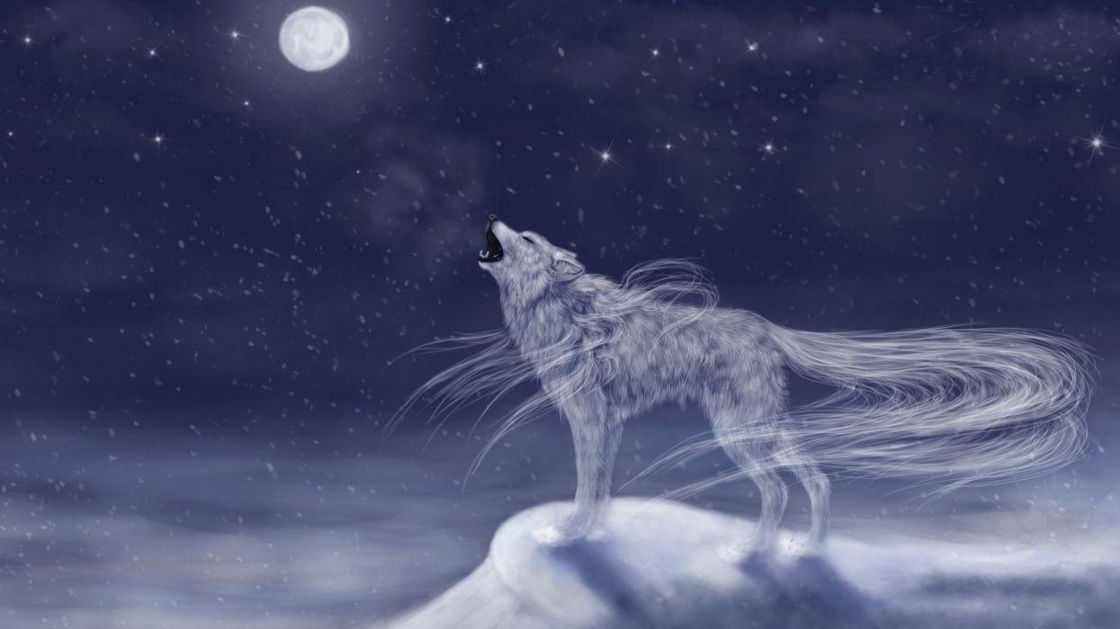 fantasy artwork art wolf wolves g wallpaper