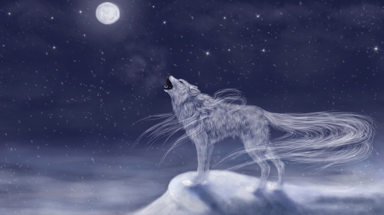 fantasy wolf art - etsycom