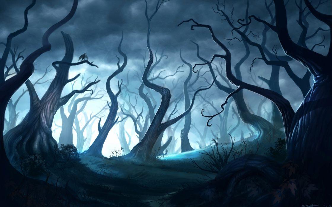 fantasy artwork art forest nature landscape f wallpaper