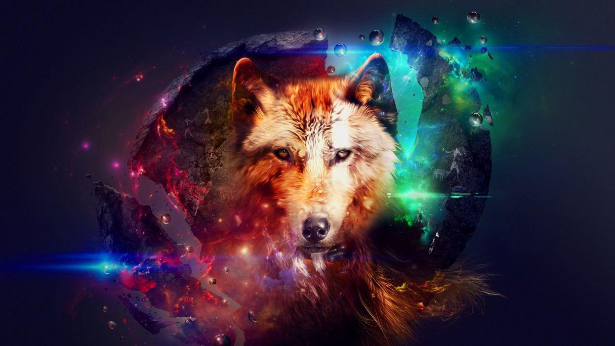 abstravto wolf wallpaper