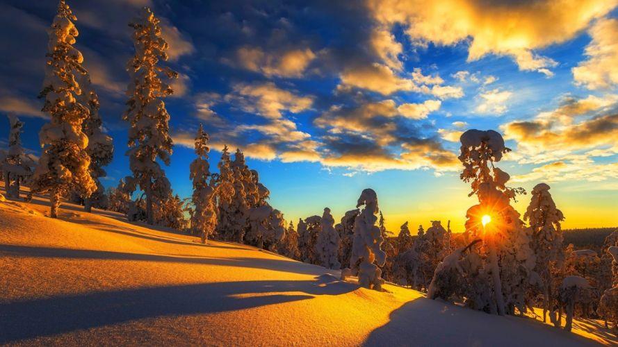 nature tree light snow sunset winter beauty landscape wallpaper