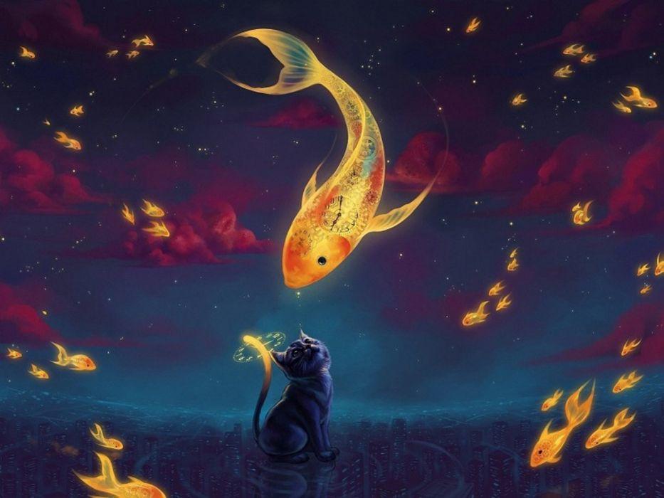 fantasy cat fish animal wallpaper