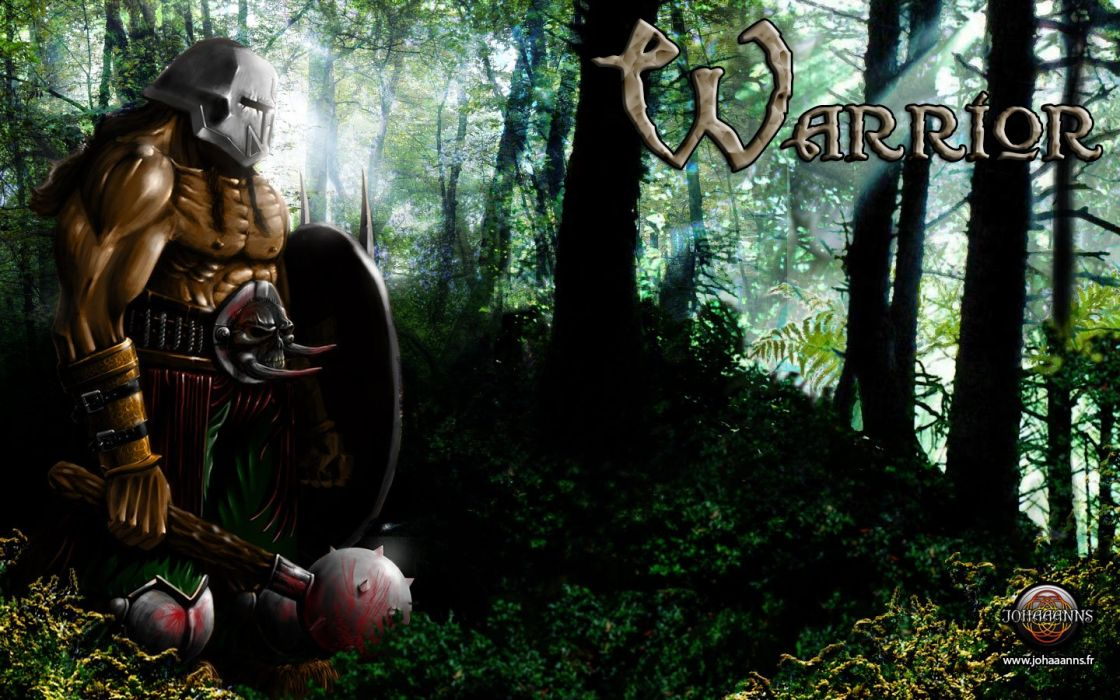 Warrior - JOHAAANNS wallpaper