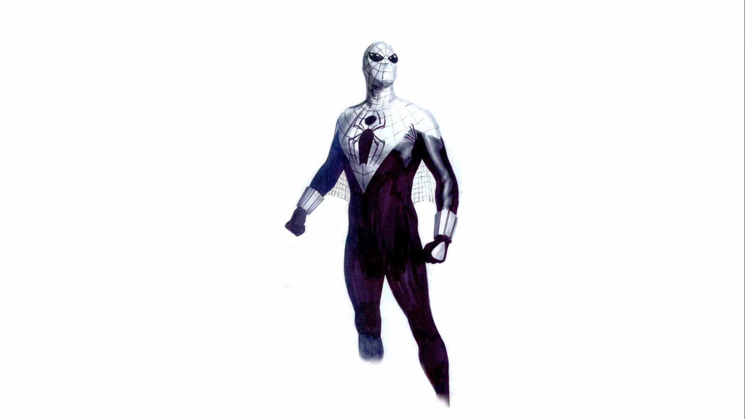 SPIDER-MAN superhero marvel spider man action spiderman wallpaper   2560x1440   749452   WallpaperUP