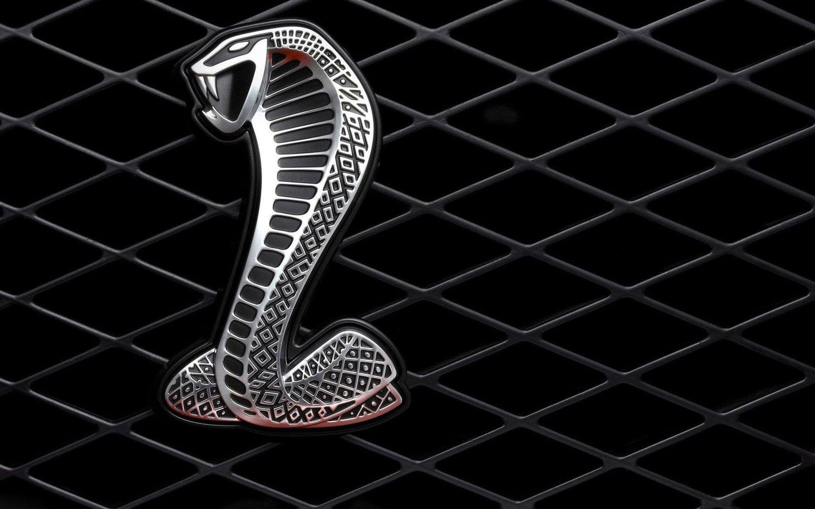 shelby gt500 super snake logo wallpaper wallpaper