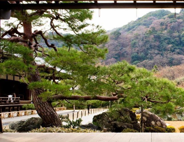 paisaje asia naturaleza wallpaper