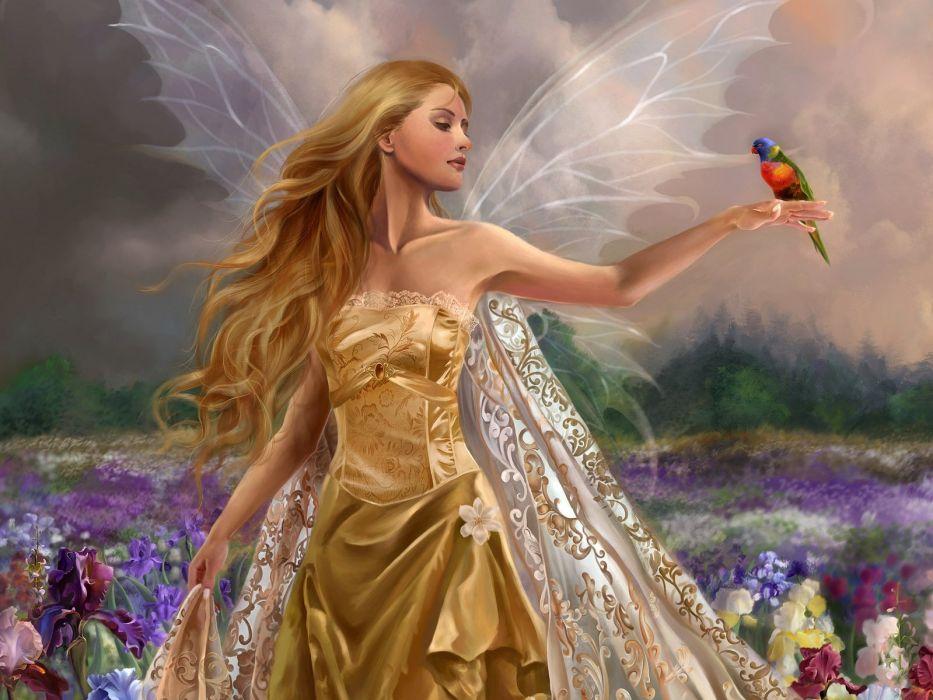 Arts fairy girl wings flowers field bird wallpaper