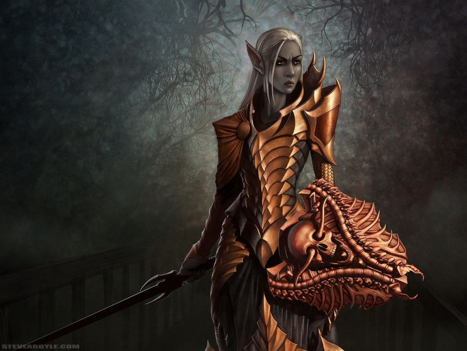 Arts girl elf armor sword gloom wallpaper