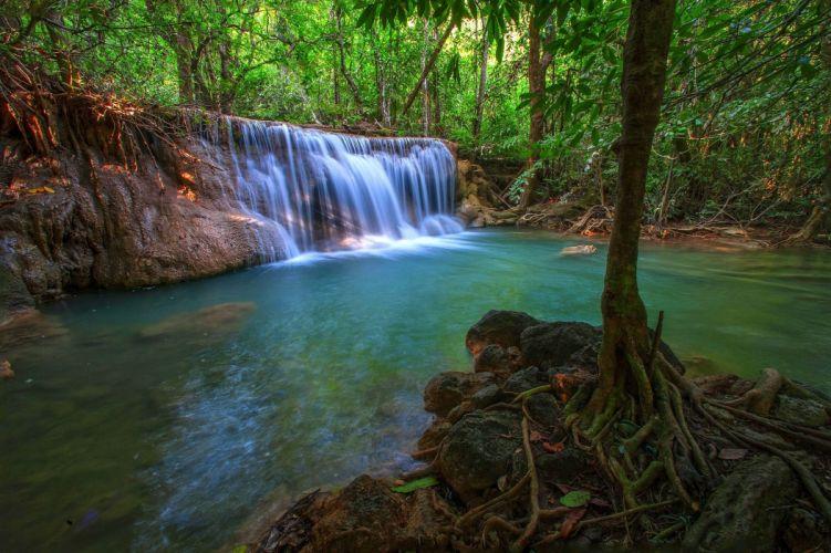 jungle forest trees stream waterfall rocks nature wallpaper