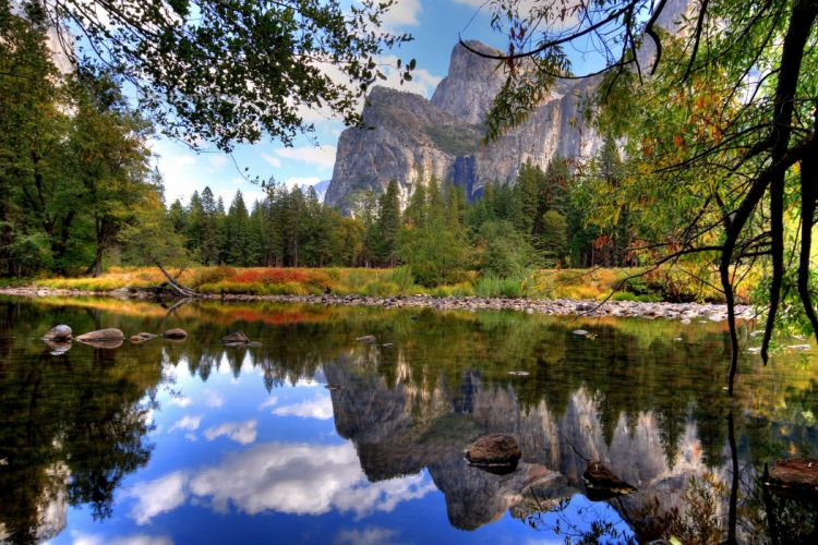 lake forest nature sky wallpaper