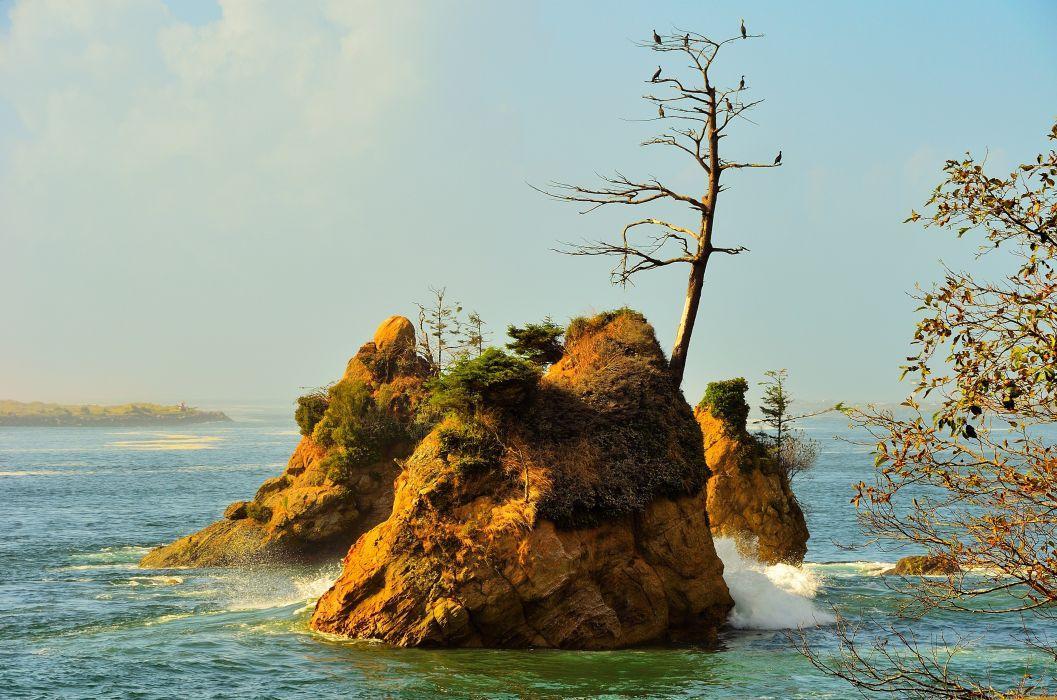 sea rocks trees landscape wallpaper