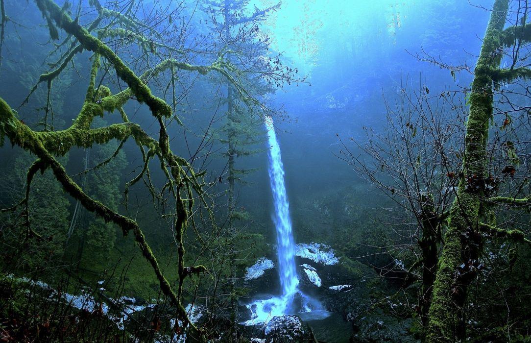 trees rocks waterfall moss fog nature wallpaper