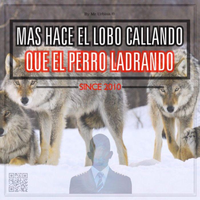 #lobos #ice #animal #texts #mrurbina wallpaper