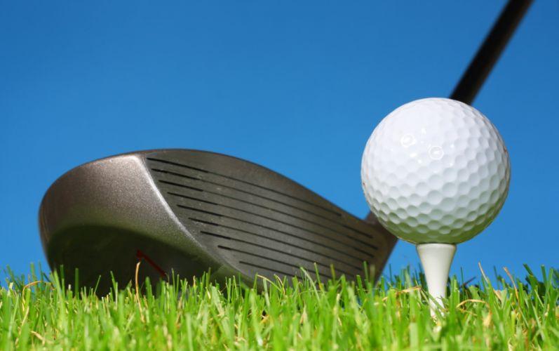 Sports golf stick ball lawn grass wallpaper
