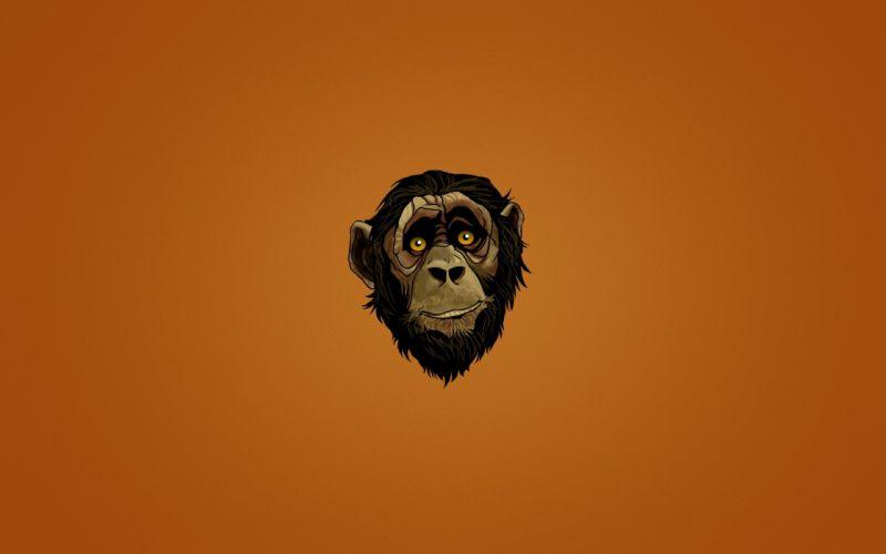 Monkey artwork wallpaper