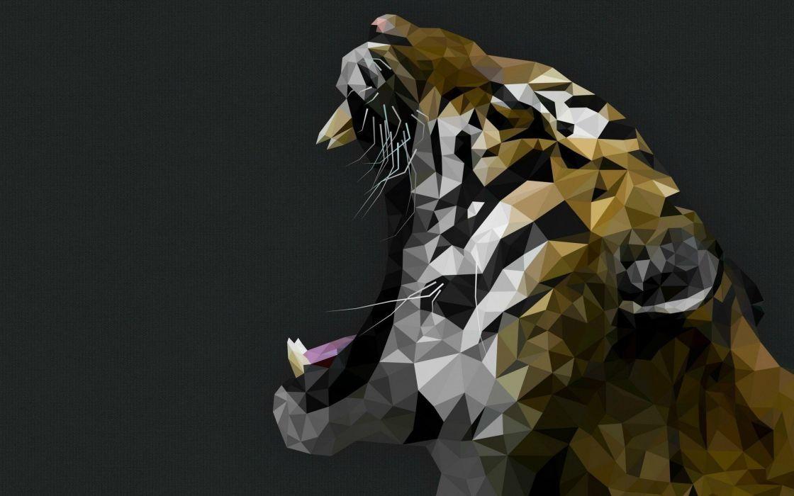 tiger predator cat artwork wallpaper