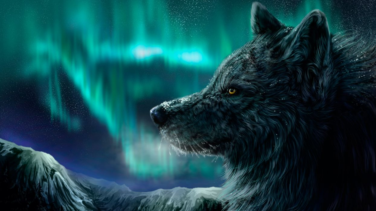 wolf wolves artwork winter wallpaper