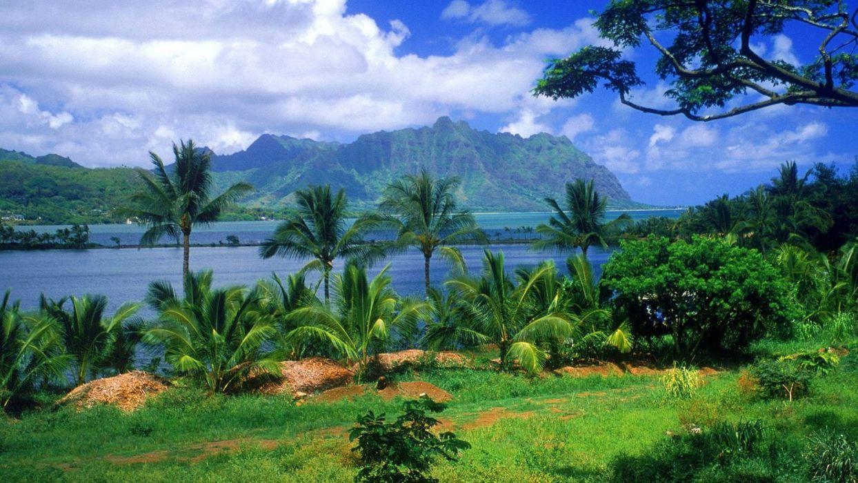 isla hawai naturaleza paisajes wallpaper
