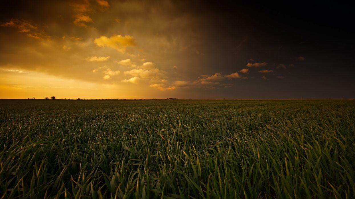 Breathtaking Sunset Painted Plains wallpaper