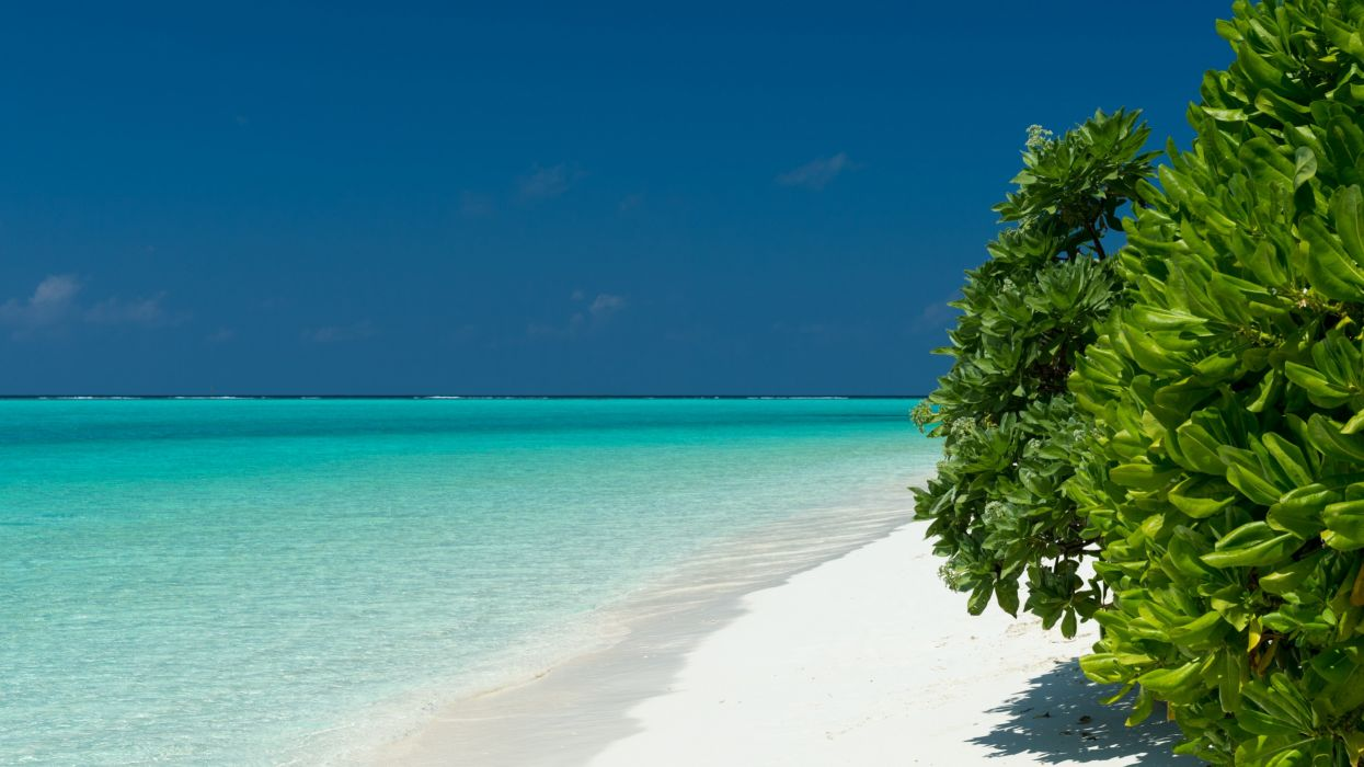 Turquoise waters Maldives wallpaper