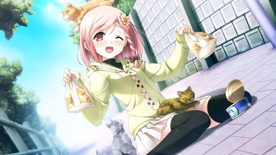 Anime girl blonde hair orange eyes with cats wallpaper