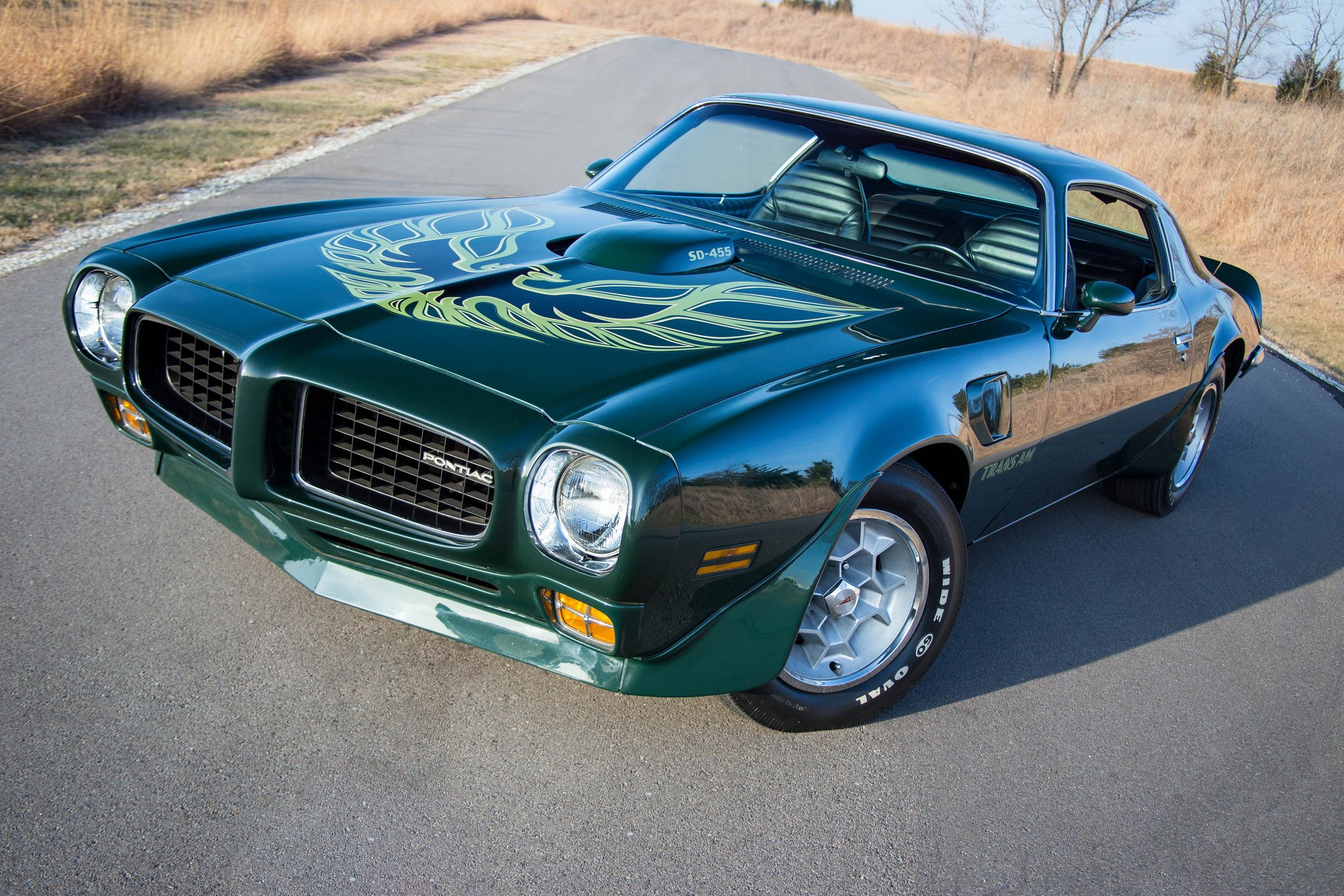 1973 pontiac green trans am coupe cars wallpaper 2048x1365 793053 wallpaperup. Black Bedroom Furniture Sets. Home Design Ideas