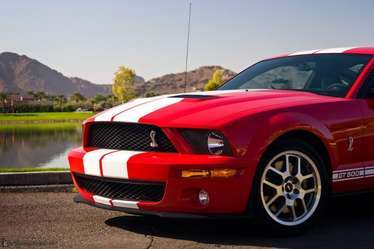 2008 Ford Shelby GT500 mustang muscle g-t wallpaper