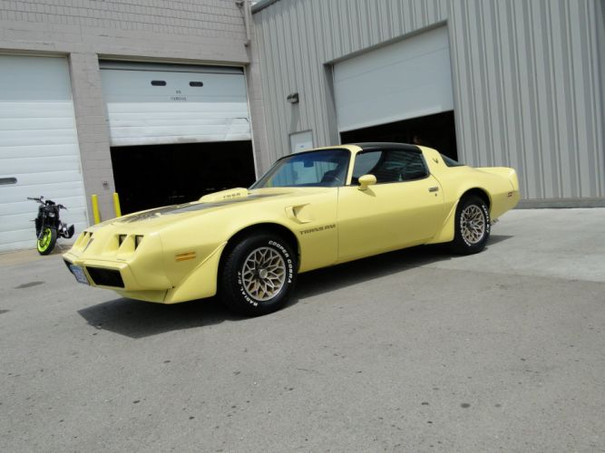 1979 Yellow Pontiac Trans-Am cars coupe wallpaper