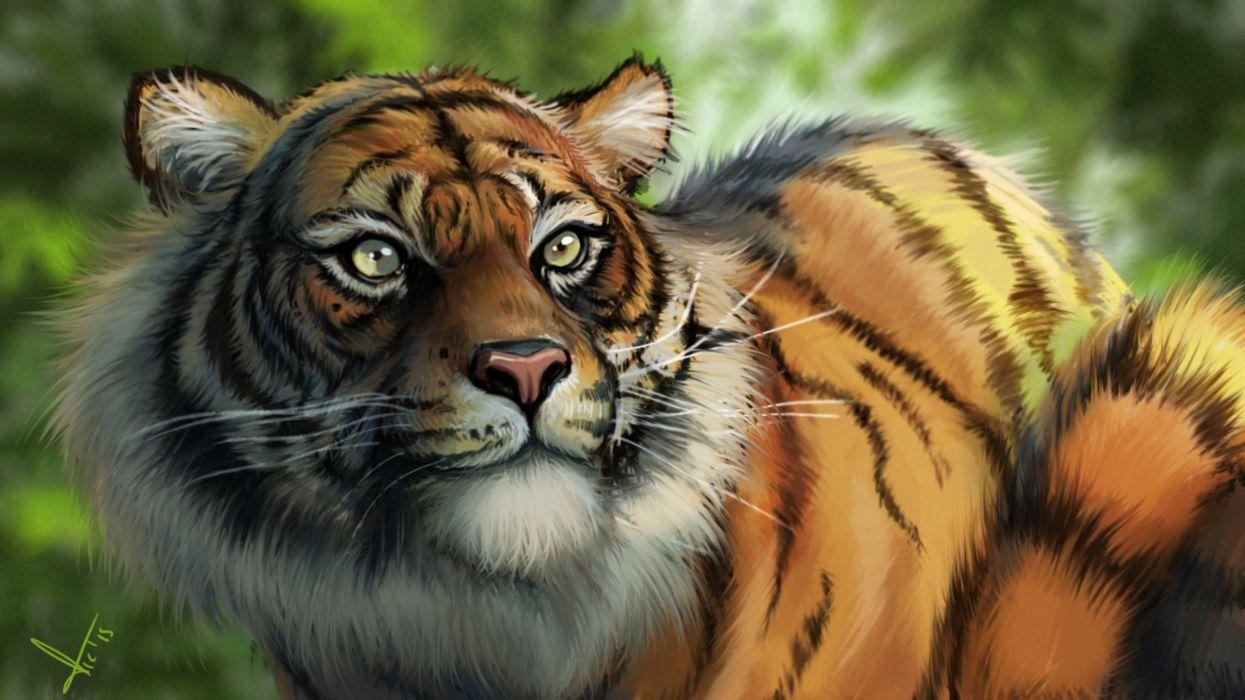 fantasy art artwork tiger predator carnivore cat wallpaper