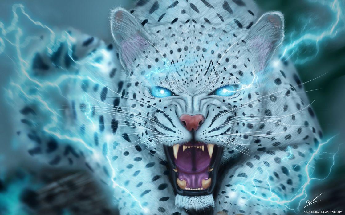 fantasy art artwork cat animal magic wallpaper