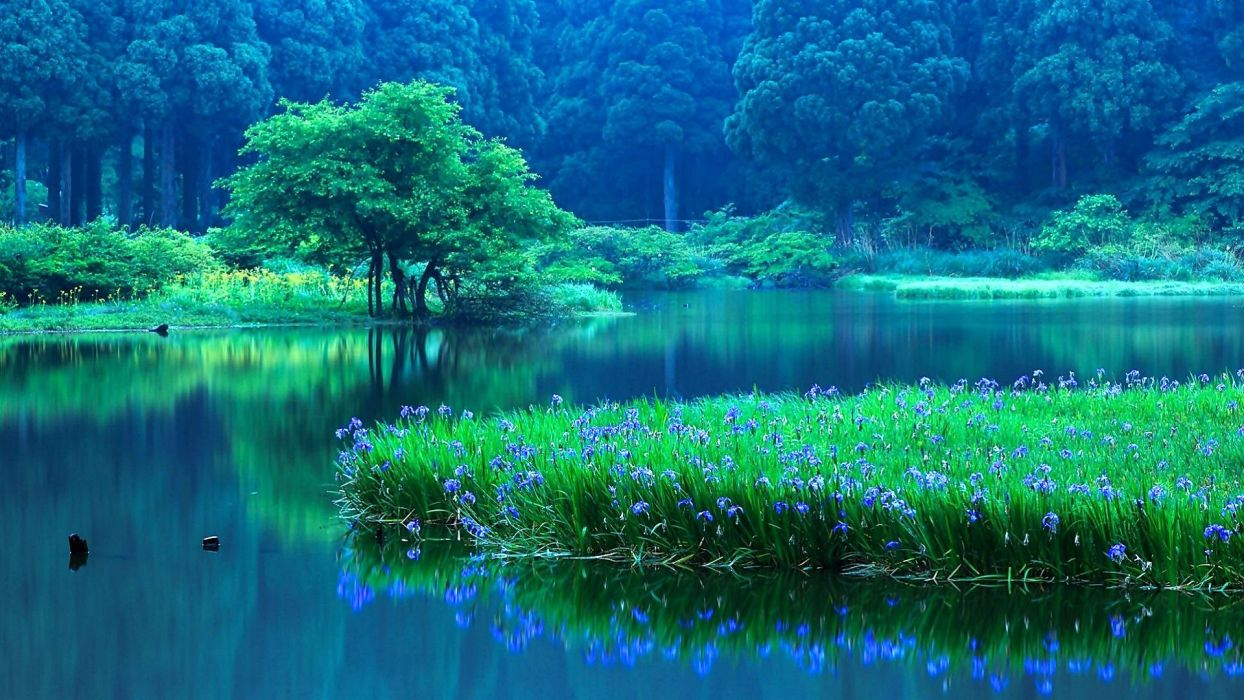 lake nature water landscape reflection wallpaper