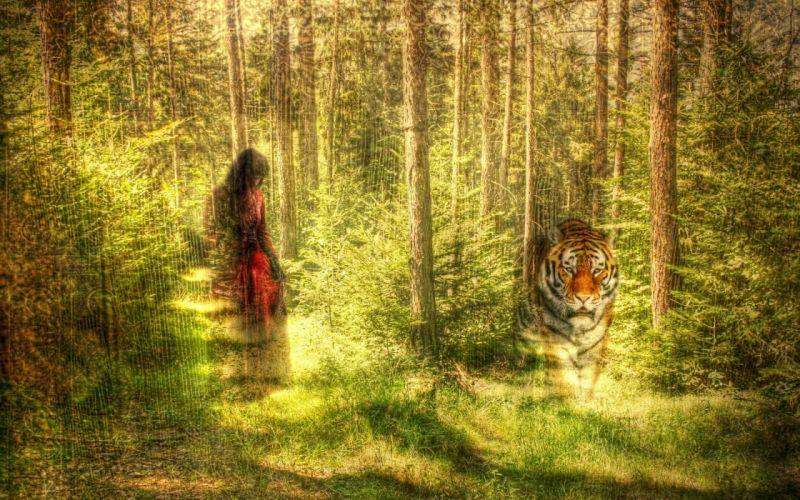 forest nature tree landscape artwork mood girl girls tiger manipulation wallpaper