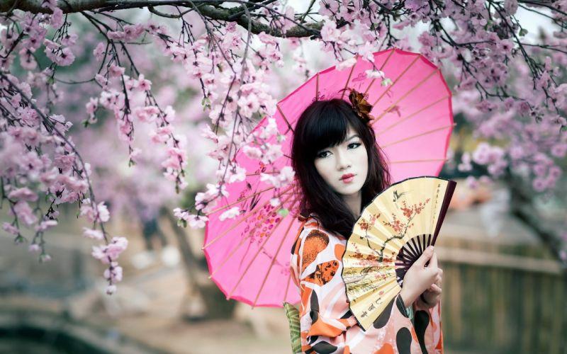 tree sakura japan girl umbrella pink beautiful wallpaper