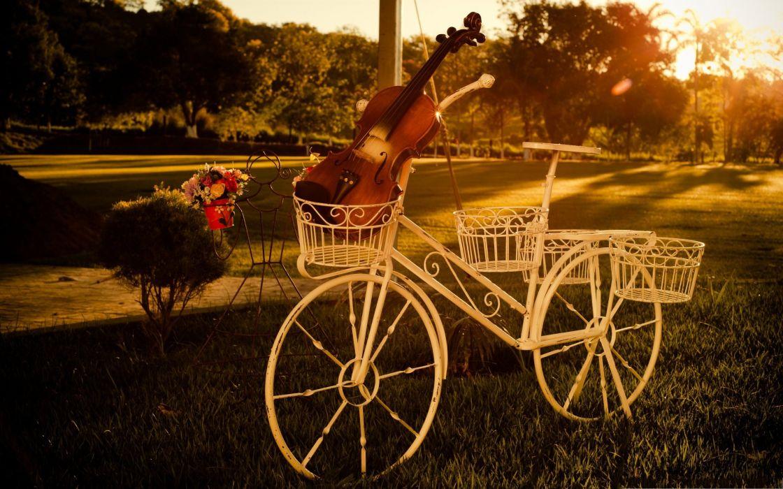 sunset bike mood tree grass beauty violin beautiful summer wallpaper