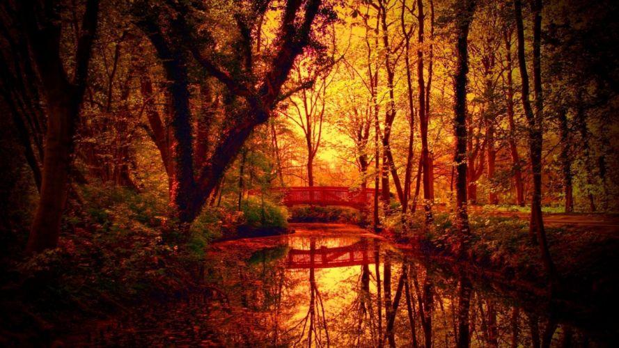 Fantastic Autumn Colors On Bridge Over A Forest Creek wallpaper